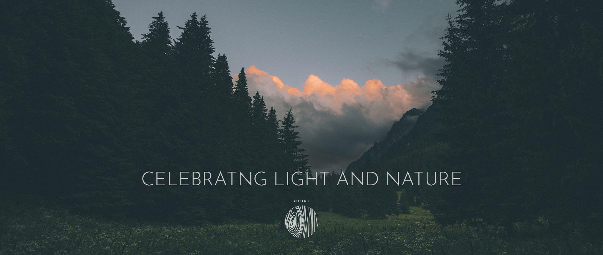 celebrating light and nature
